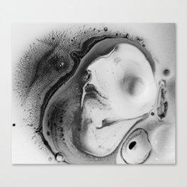Espy Canvas Print