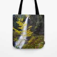 The summer ends  Tote Bag