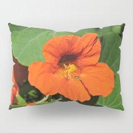 Nasturtium Pillow Sham