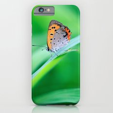 Butterfly on Grass Slim Case iPhone 6
