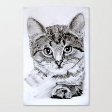 Kitten - Pencil on paper Canvas Print