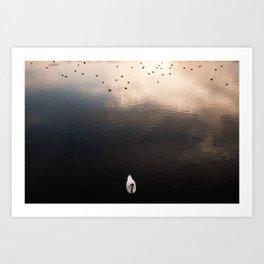 Swan, River Clyde Art Print