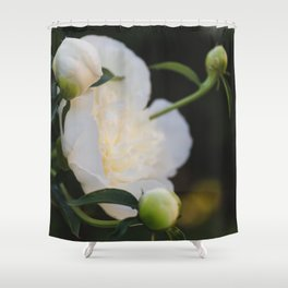 Portrait of a Peony at Dawn - Floral Photography Shower Curtain