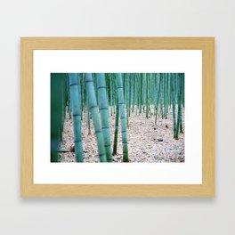 The Bamboo Grove, Arashiyama, Kyoto Framed Art Print