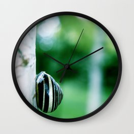 Snail on Silver Birch Wall Clock