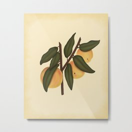 Bashful Peaches Metal Print