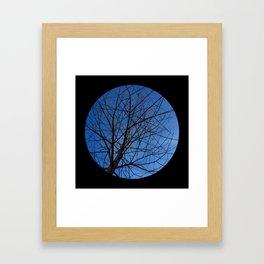 Trees from below 7 Framed Art Print