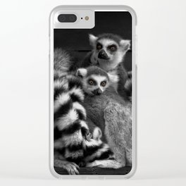 Gang Of Ring-Tailed Lemurs Clear iPhone Case
