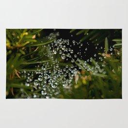 Nature's Ornaments Rug