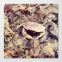 crab Canvas Prints featuring Crab by Ken Seligson