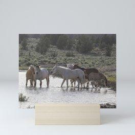 Cooling Off Mini Art Print