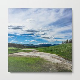 Hayden Valley, Yellowstone National Park Metal Print