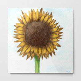 The Colored Pencil Sunflower Drawing Metal Print