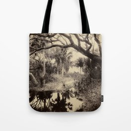 Live Oaks and Palmetto, Everglades, Florida, Vintage Tote Bag