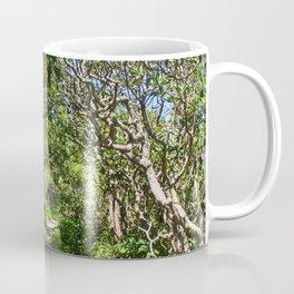 Craggy Gardens Walkway Coffee Mug