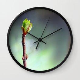 Rise of the Hydrangea Wall Clock