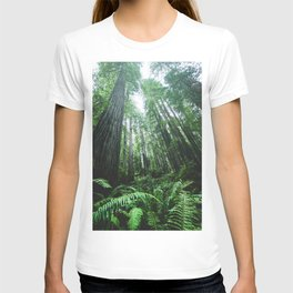 Redwood National Park- Pacific Northwest Nature Photography T-shirt