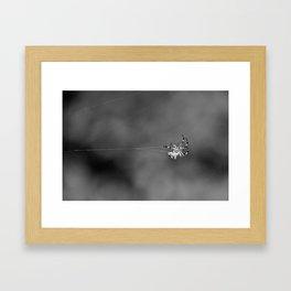 Dancer in the Dark Framed Art Print