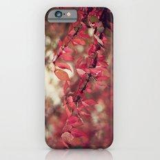 Crimson Blush Slim Case iPhone 6s