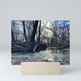 Creek Scene, Cuyahoga Valley Mini Art Print