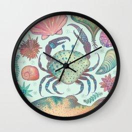 Marine Creatures II Wall Clock