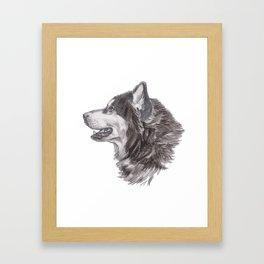 Gotta draw the Husky Doggie Framed Art Print
