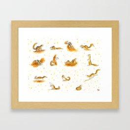 Squirrels Framed Art Print