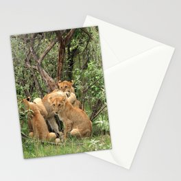 Masai Mara Lion Cubs Stationery Cards