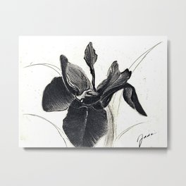 Black iris Sketch Metal Print