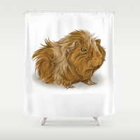 guinea pig Shower Curtains featuring grumpy old guinea pig  by Devon Busby Busbyart