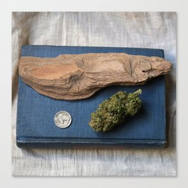 High-O-Rama Series: Driftwood Canvas Print