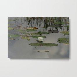 Monet's Dream Metal Print
