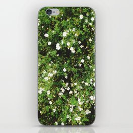 Spring is coming! iPhone Skin