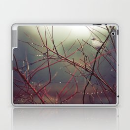 Bird and Red Branches Laptop & iPad Skin