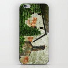Prunes Graines Noix iPhone & iPod Skin