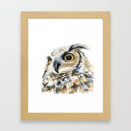 Owl Great Horned Bird of Prey Owls Animals Bird Wildlife Framed Art Print