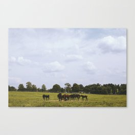 Kentucky, United States Canvas Print