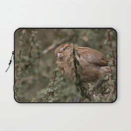 Little sparrow in the tress Laptop Sleeve