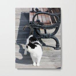 Boardwalk Kitty Metal Print