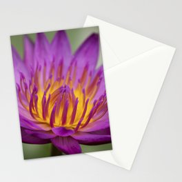 Water Lily - portrait version Stationery Cards