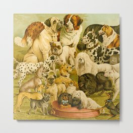 Dog Breeds Metal Print