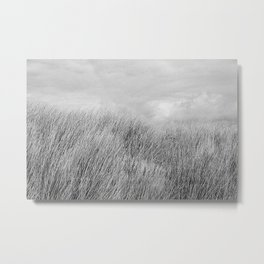 Beach grass - black and white Metal Print