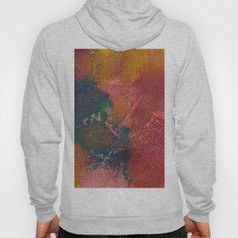 Abstract No. 312 Hoody