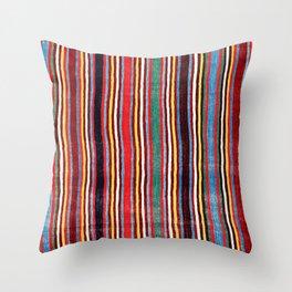 Qashqa'i Antique Fars Southwest Persian Striped Kilim Print Throw Pillow