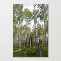 Sunday's Trail #1 Canvas Print