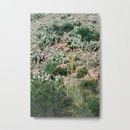 Mountain Side Metal Print
