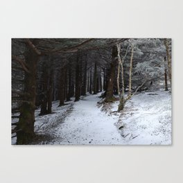 Winter on the AT Canvas Print