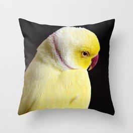 Shy Parakeet Throw Pillow