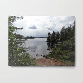 Lake Path Metal Print