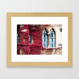 Creeping Vine Framed Art Print